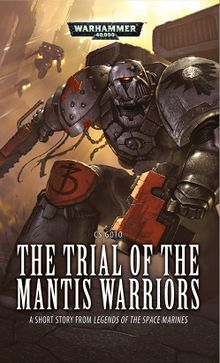 The-Trial-of-the-Mantis-Warriors.jpg