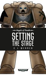 Setting-the-stage.jpg