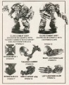 Wd133 space marines terminators.jpg