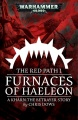Furnaces of Haeleon cover.jpg