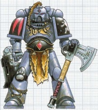 Space Wolves Space Marine.JPG