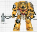 Imperial Fists Terminator.jpg